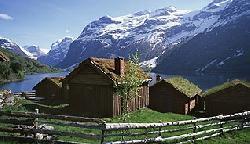 Фьорды и горы
